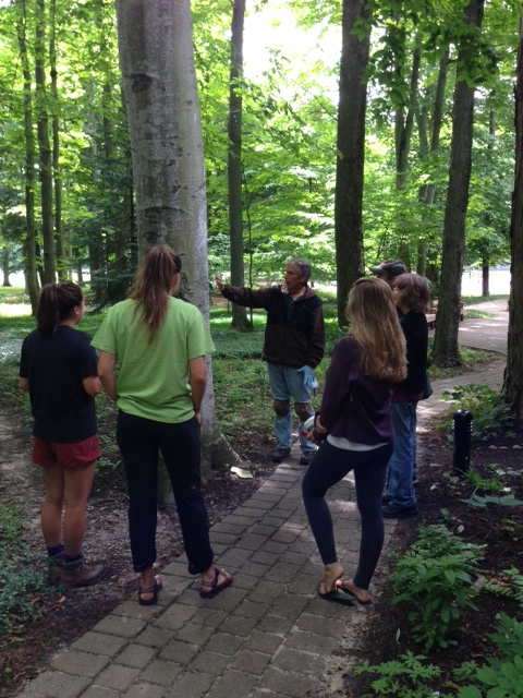 BBD Ecology Interns